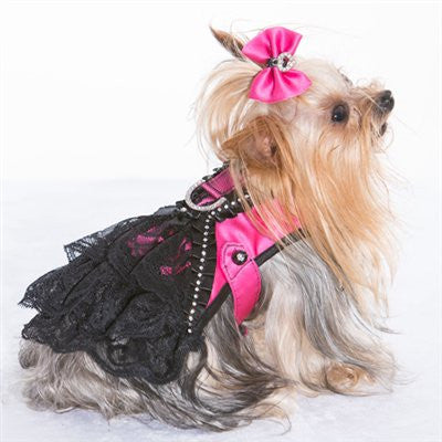 Bridget Bone's Diary - Corset Harness - ZoeDoggy of Beverly Hills