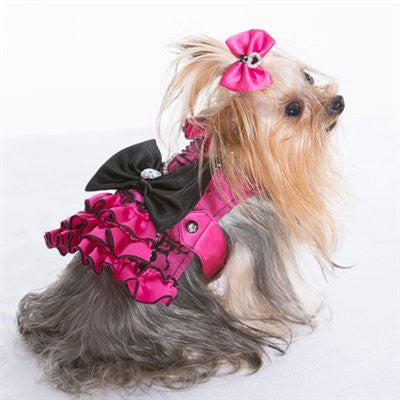 My Fair Lady - Corset Harness - ZoeDoggy of Beverly Hills