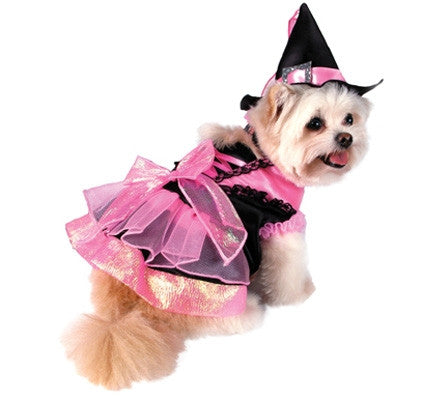 Halloween Shiny Pink Witch Dog Costume