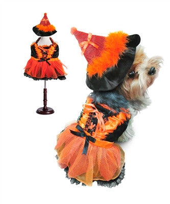 Orange & Black Witch Dog Costume – LED