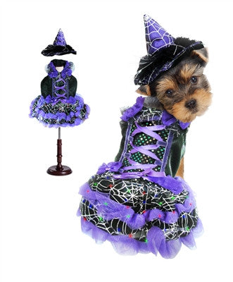 Purple Witch Dog Costume with LED