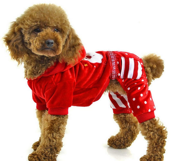 Winter Christmas Dog Sweater with Leggings - ZoeDoggy of Beverly Hills