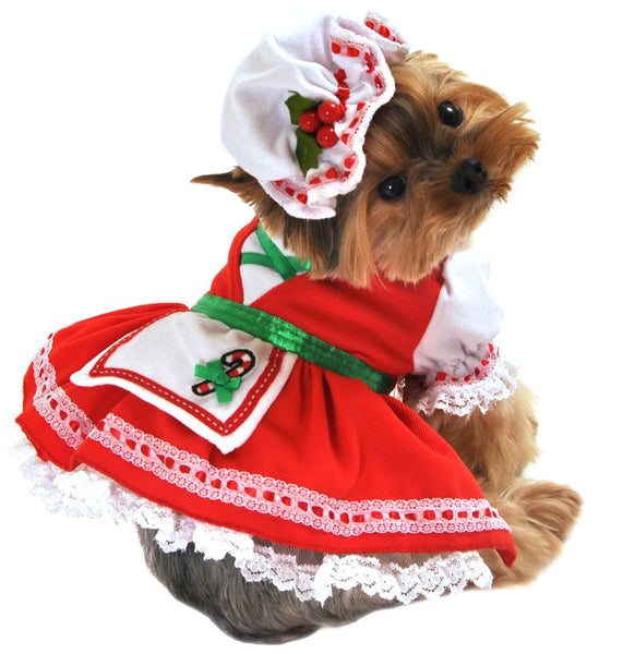 Candy Cane Cutie Dog Costume - ZoeDoggy of Beverly Hills