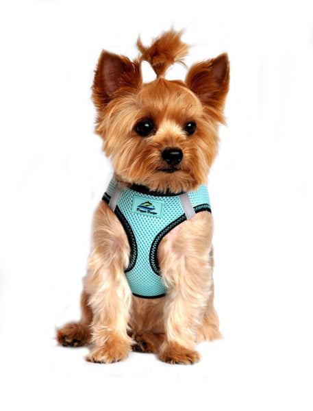 American River ARH Top Stitch Harness Choke Free  -  Aruba Blue - ZoeDoggy of Beverly Hills