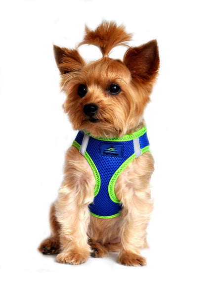 American River ARH Top Stitch Harness Choke Free - Cobalt Blue - ZoeDoggy of Beverly Hills