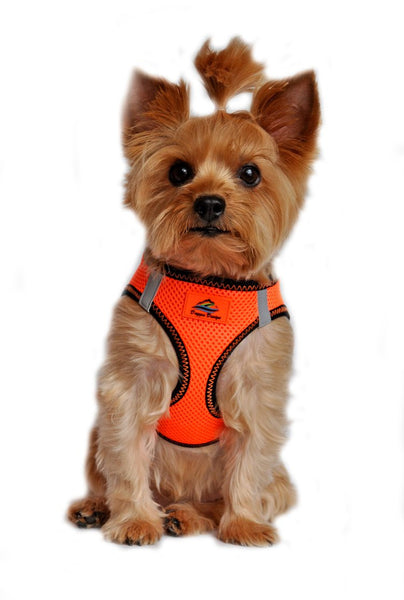 American River ARH Top Stitch Harness Choke Free - Iridescent Orange - ZoeDoggy of Beverly Hills