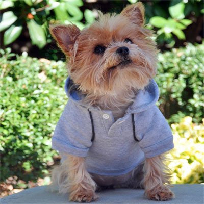 Glacier Gray Sport Sweatshirt - ZoeDoggy of Beverly Hills