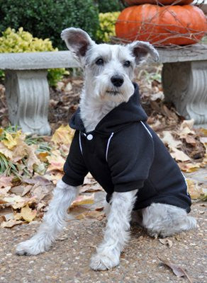 Jet Black Sport Sweatshirt - ZoeDoggy of Beverly Hills