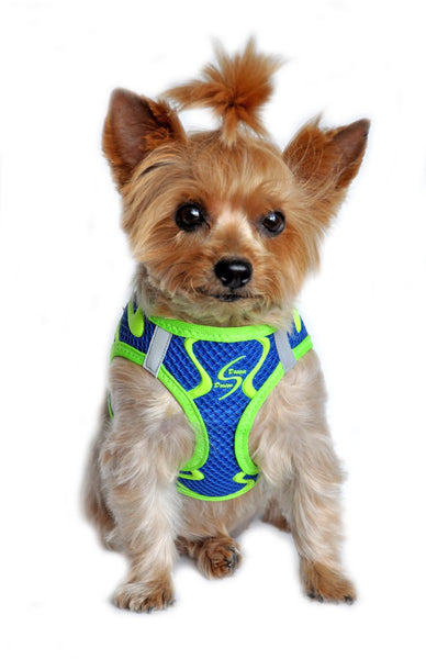 American River Neon Sport Choke Free Harness - Cobalt Blue - ZoeDoggy of Beverly Hills