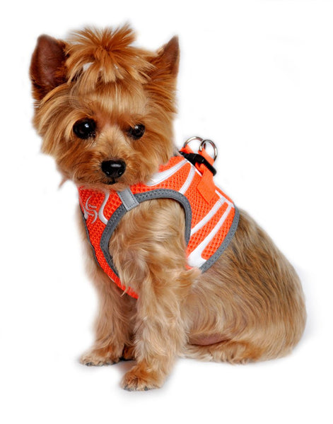 American River Neon Sport Choke Free Harness - Iridescent Orange - ZoeDoggy of Beverly Hills