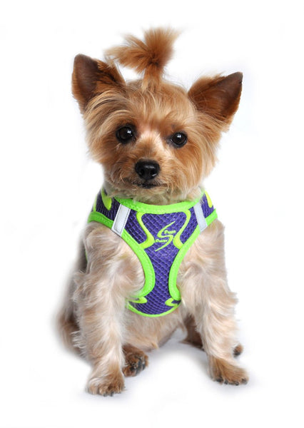 American River Neon Sport Choke Free Harness - Ultra Violet - ZoeDoggy of Beverly Hills