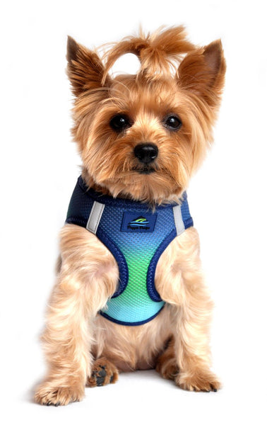 Ombre American River Choke Free Harness - Northern Lights - ZoeDoggy of Beverly Hills