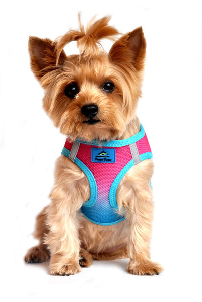 Ombre American River Choke Free Harness - Sugar Plum - ZoeDoggy of Beverly Hills