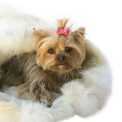 Pink Recycled Ultra Suede Hair Bows - ZoeDoggy of Beverly Hills