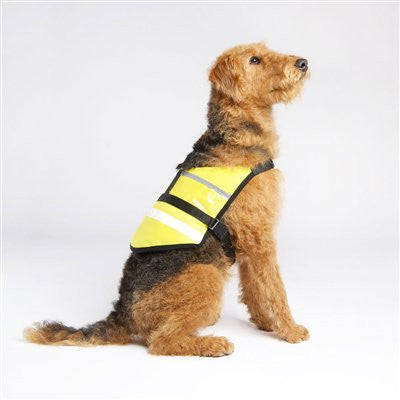 Visibility Vest - ZoeDoggy of Beverly Hills