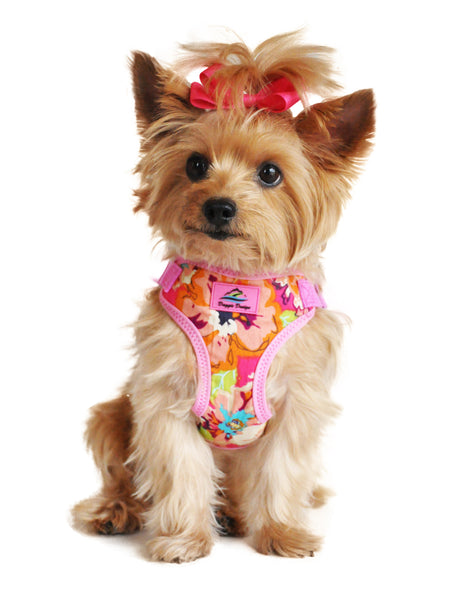 Wrap and Snap Choke Free Dog Harness - Aruba Raspberry - ZoeDoggy of Beverly Hills