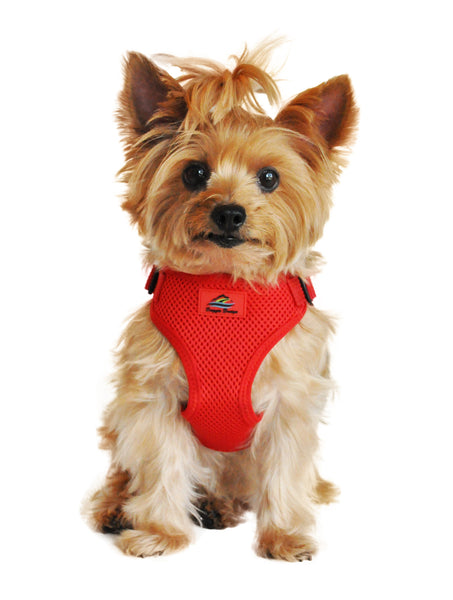 Wrap and Snap Choke Free Dog Harness - Flame Red - ZoeDoggy of Beverly Hills