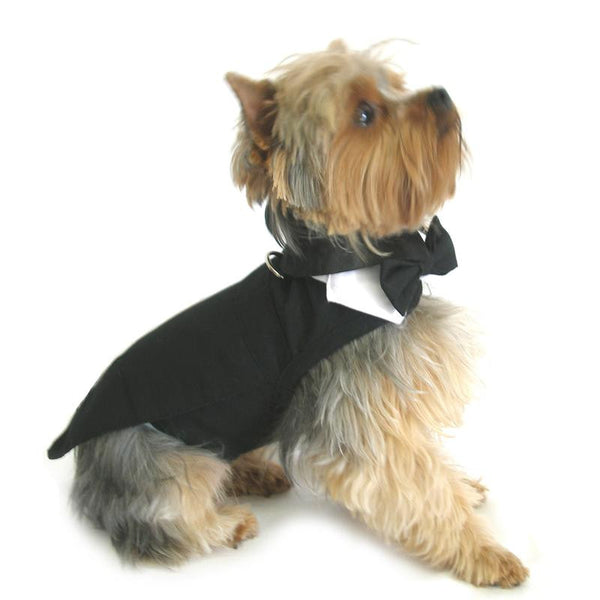 Black Tuxedo Dog Harness With Tails, Bow Tie, and Cotton Collar - ZoeDoggy of Beverly Hills