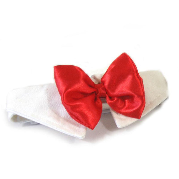 Wedding Red Satin Dog Bow Tie and Collar - ZoeDoggy of Beverly Hills