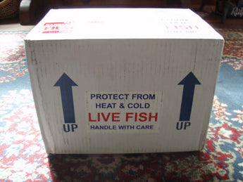 Live Fish Online vs. The Brick and Mortar