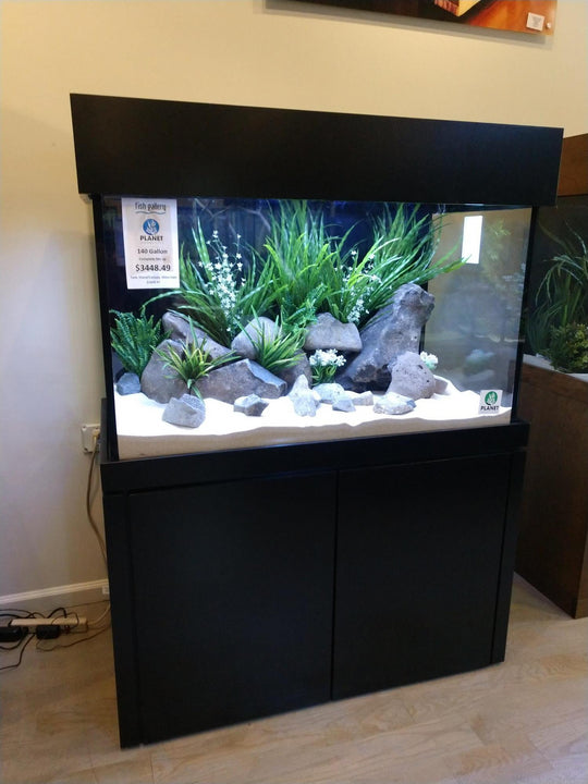 140 Gallon Planet Aquariums Aquarium