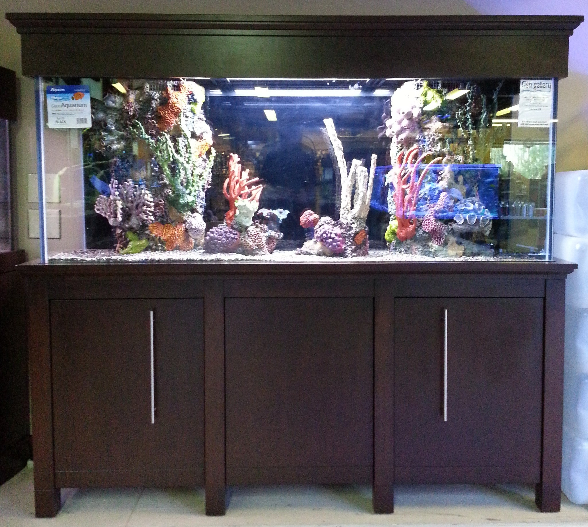 Bayside Style Stand and Canopy & Custom Aquarium Stands - Fish Gallery