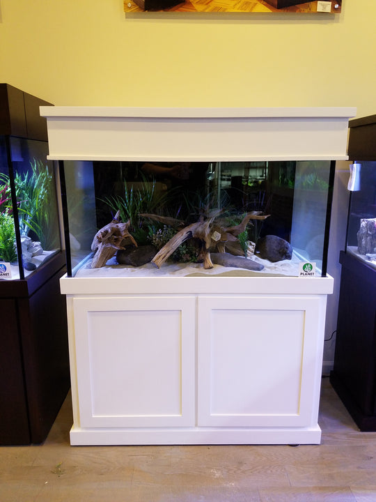 120 Gallon Aquarium (Complete Setup)
