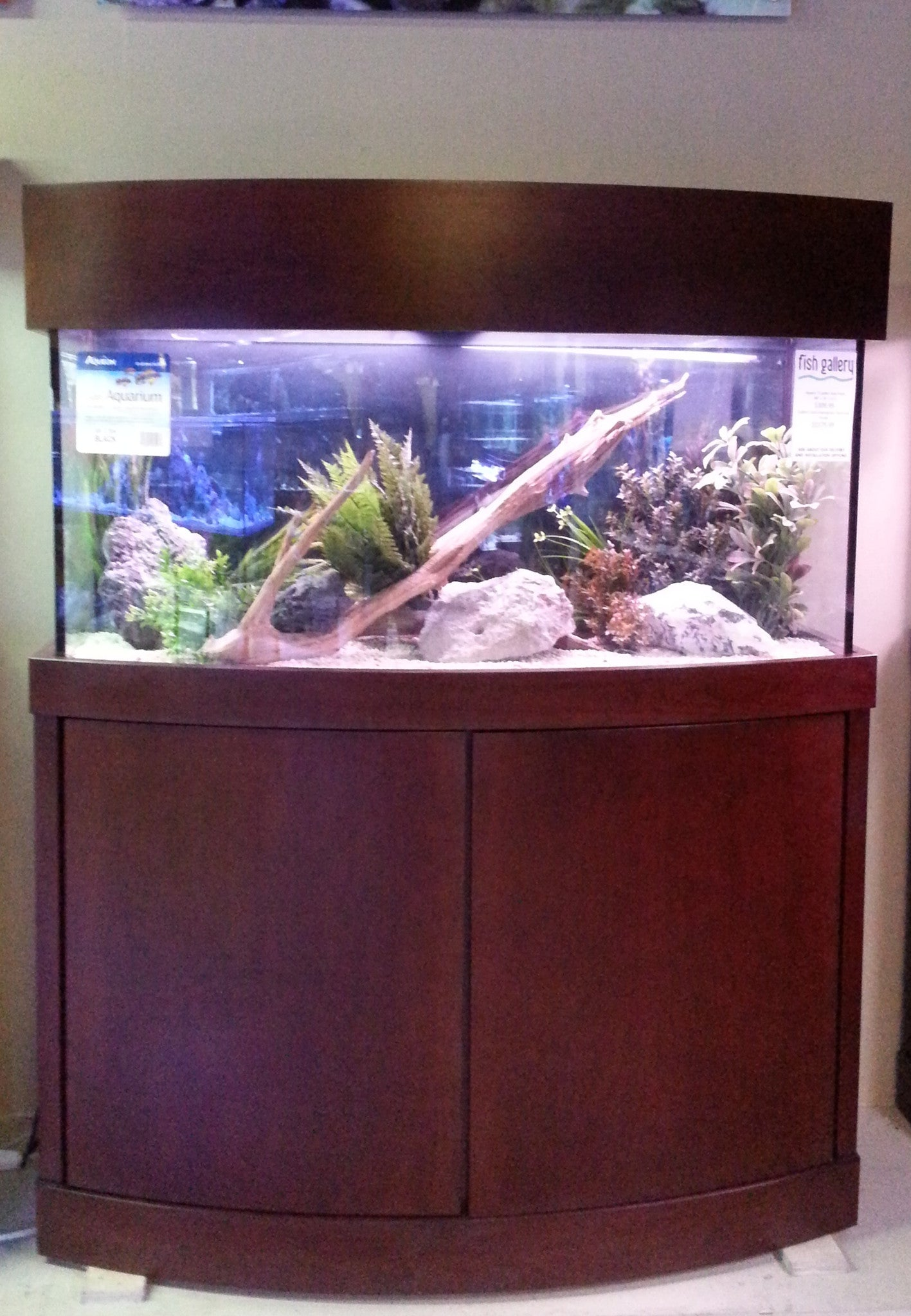 Euro Contemporary Style Bowfront Stand and Canopy & Custom Aquarium Stands - Fish Gallery