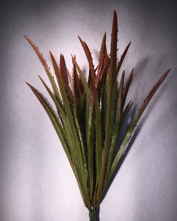 Agave Grass Red/Green