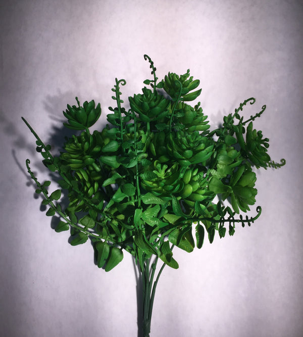 Bouquet Fern