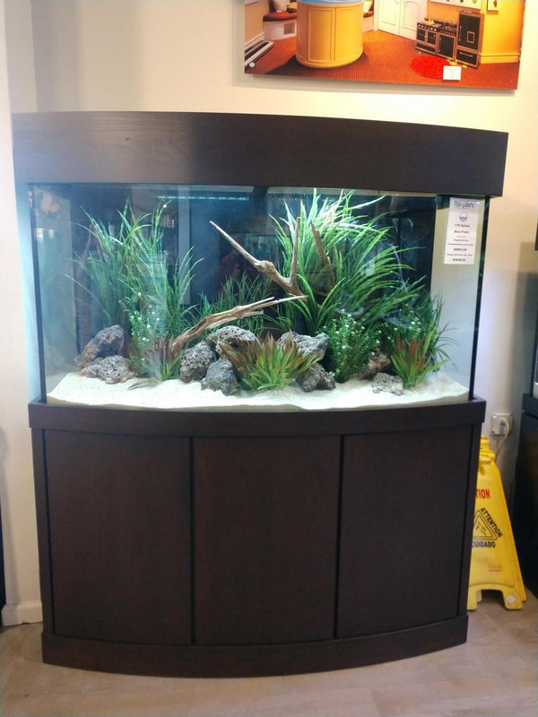 180 Gallon AGE Bowfront