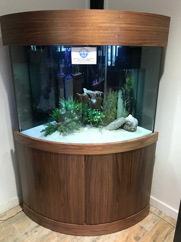 110 Gallon Corner Bow