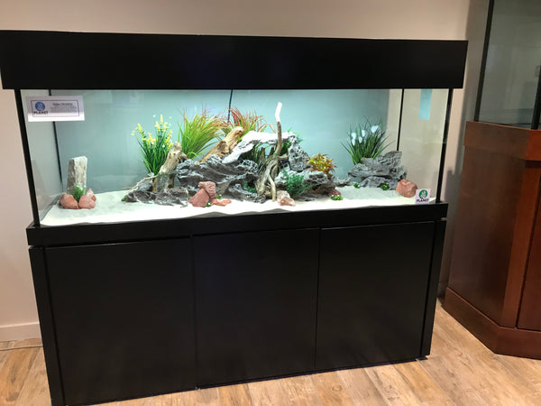 150 Gallon Planet Aquariums Tank