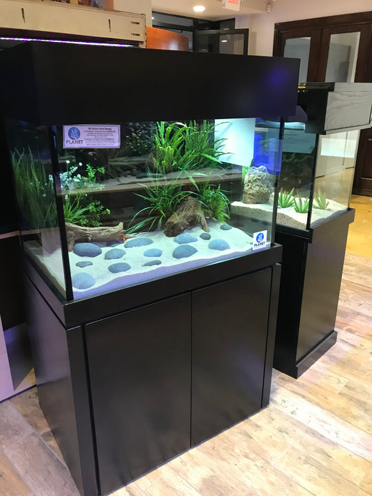 90 Gallon Planet Aquarium Tank