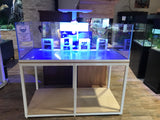 155 Gallon Rimless AGE with Custom Synergy Overflow