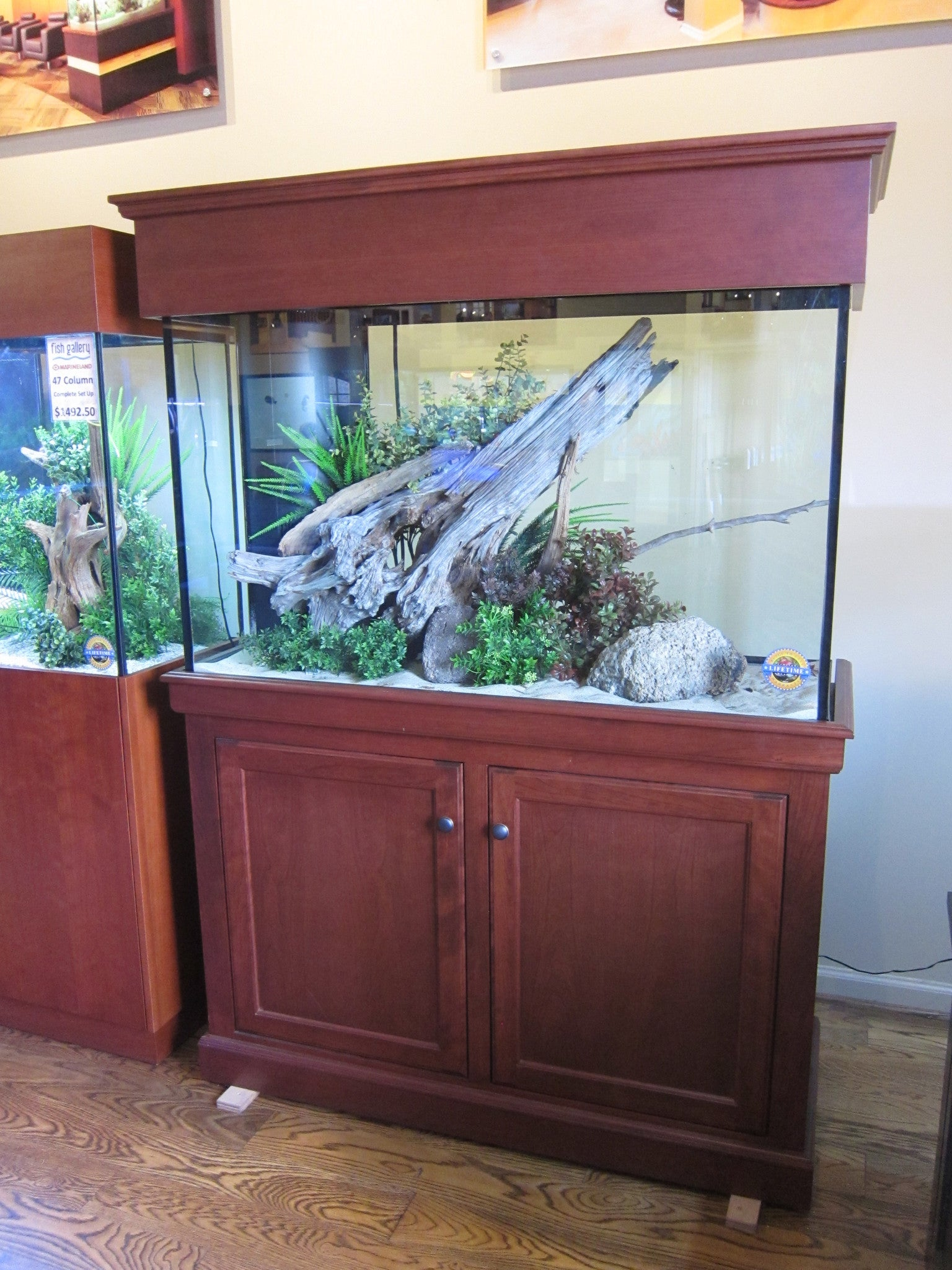 Traditional Style Stand and Canopy & Custom Aquarium Stands - Fish Gallery