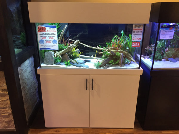 Custom 90 Gallon Complete Aquarium
