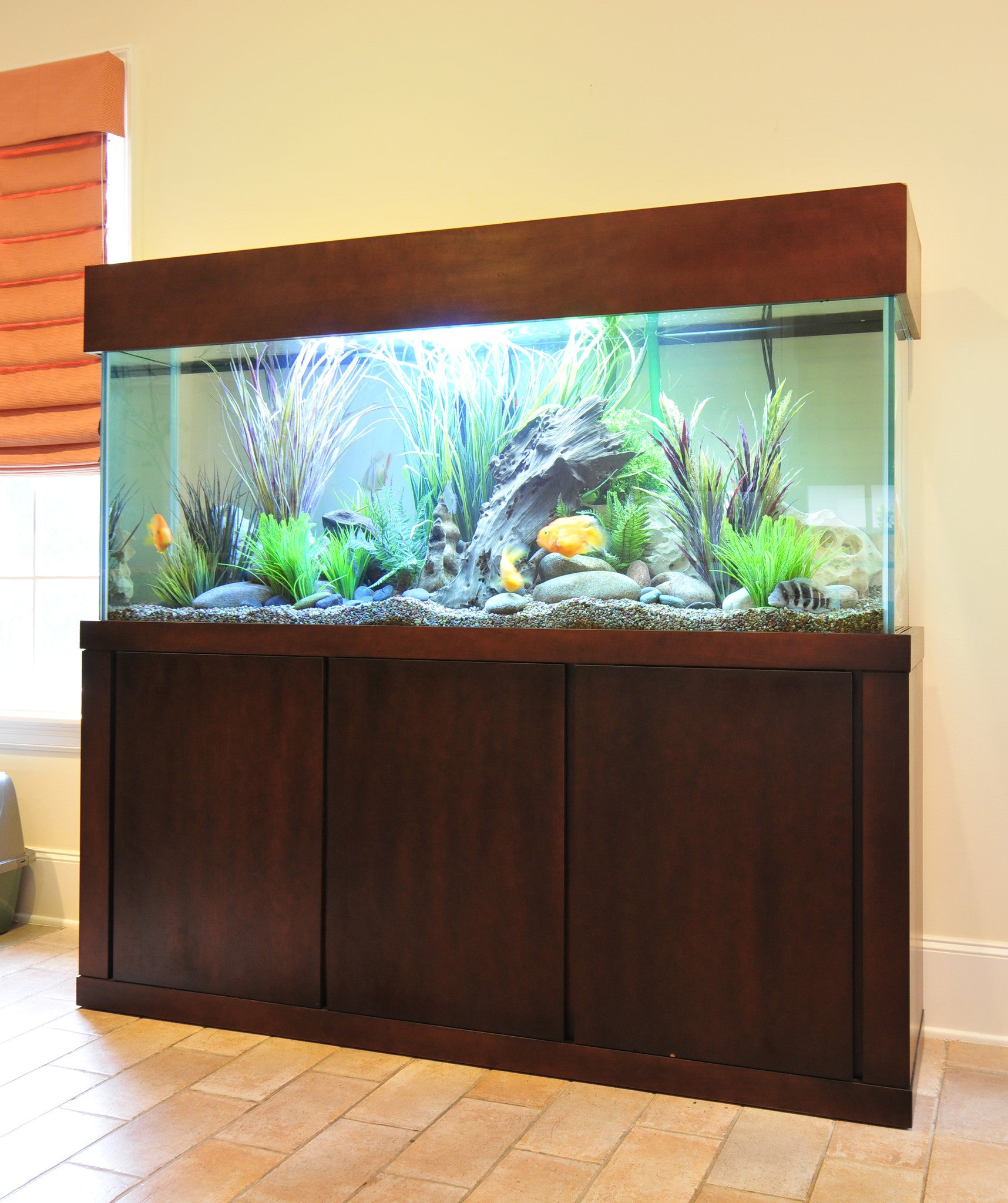 Euro Contemporary Style Stand and Canopy & Custom Aquarium Stands - Fish Gallery