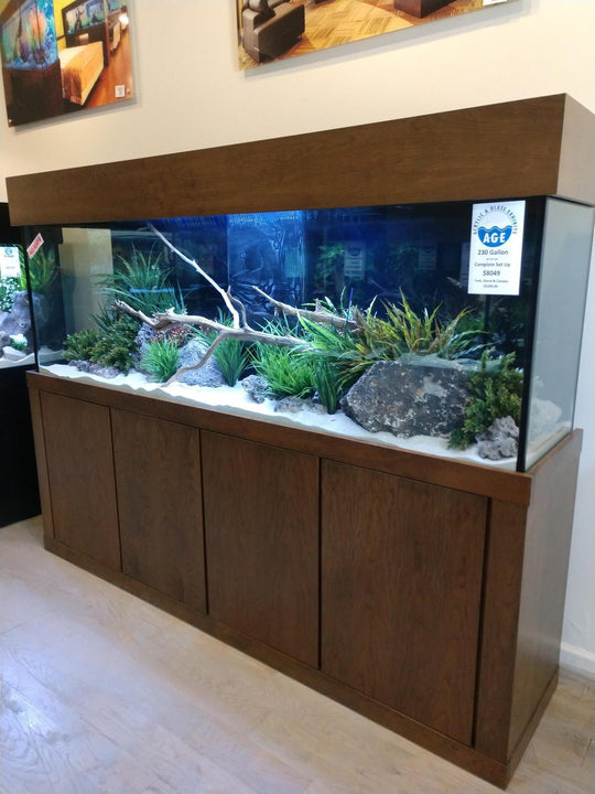 230 Gallon AGE Aquarium