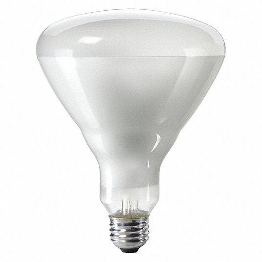 SoCal 75W or 100W BR40 Halogen Light
