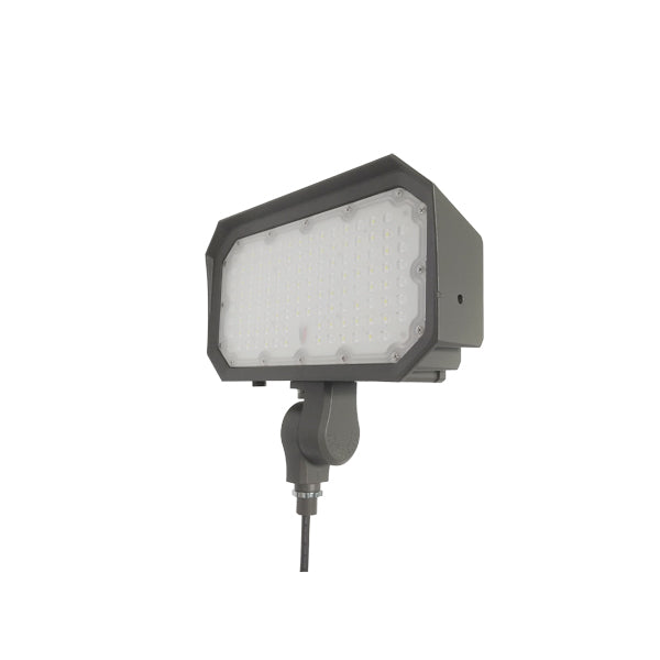 Rouge 150W EFL1-150-XX LED Flood Light
