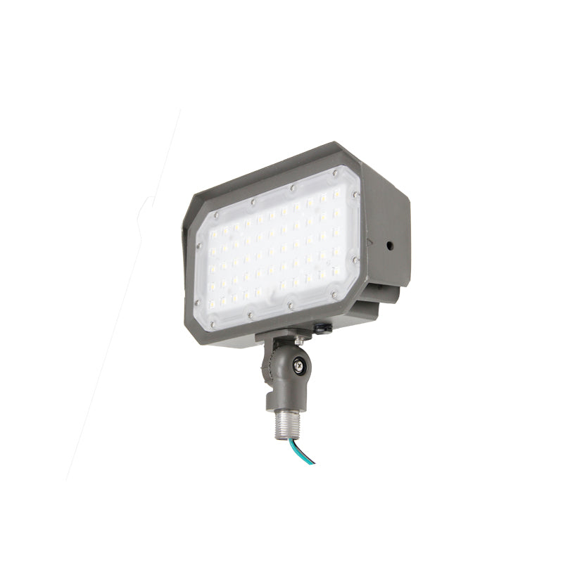 Rouge 50W EFL1-50-XX LED Flood Light