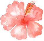 Tropical pink flower