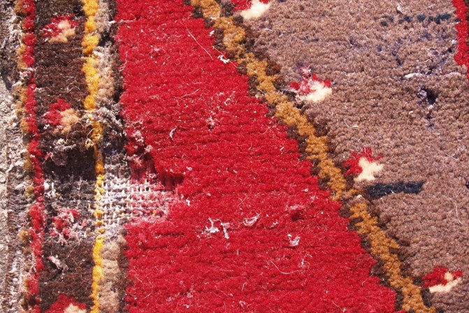 How to Prevent and Treat Moth Infestation in your Rugs in 5 Easy Steps
