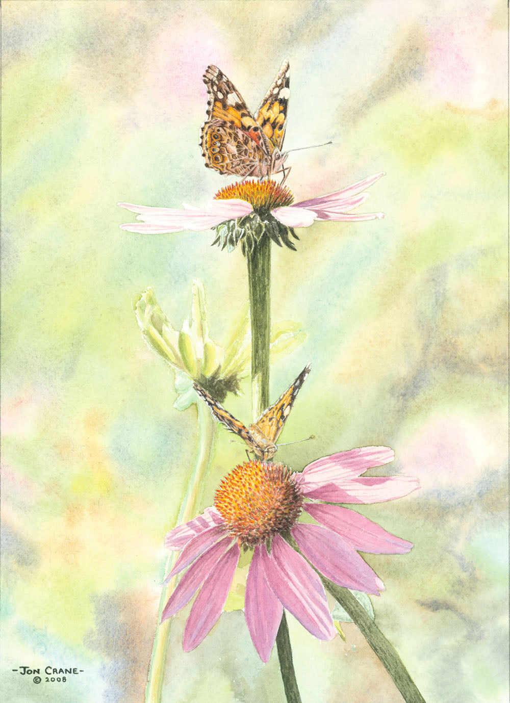 A DELICATE BALANCE by Jon Crane -- Fine Art Watercolors