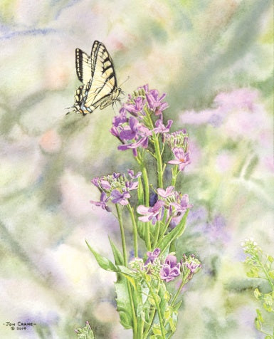 SYMBIOSIS by Jon Crane -- Fine Art Watercolors