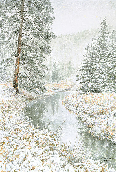 DOWN CASTLE CREEK by Jon Crane -- Fine Art Watercolor