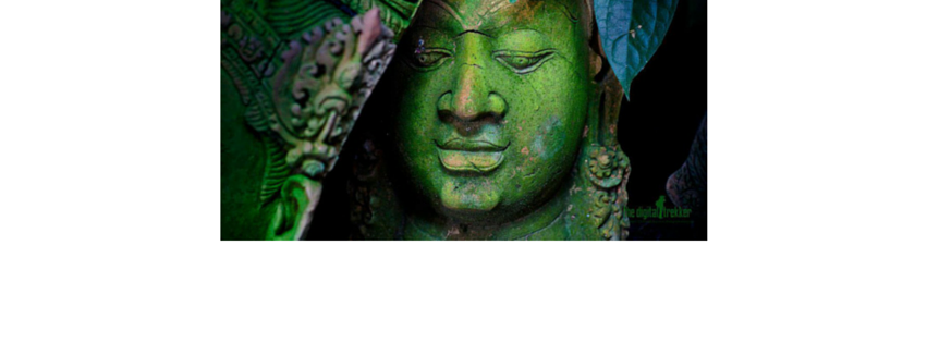 BigGreenBuddha is officially a Green Company