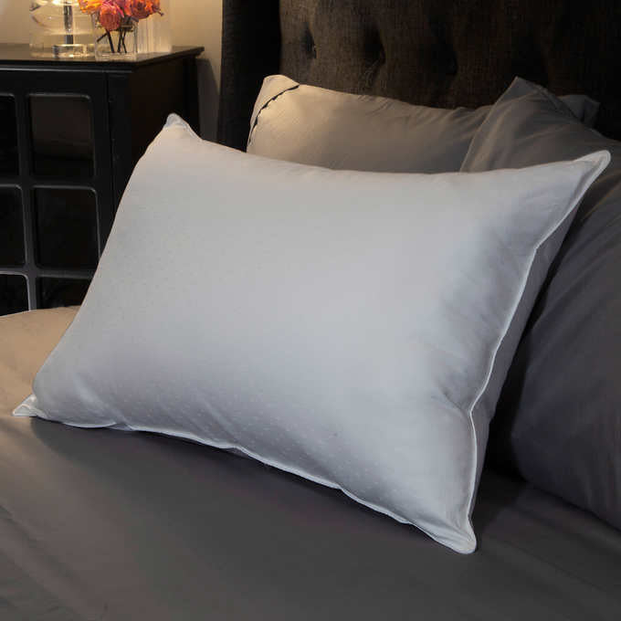 Allied Home Down and Synthetic Blended Pillow