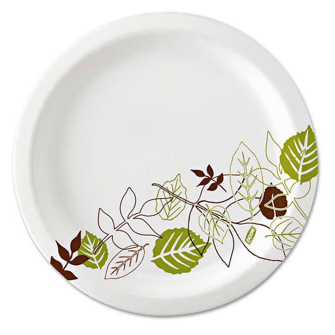 "Dixie Paper Plate 10-1/8"" 500ct DXE SXP10PATH"